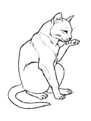 рисунки котов и кошек карандашом: